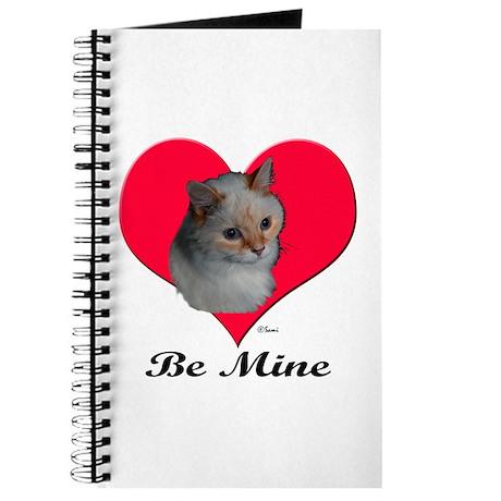 Kekoe the cat's Valentine Journal