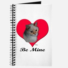 Kekoe the cat's Valentine Journal