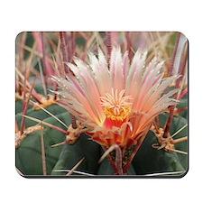 Cactus002 Mousepad