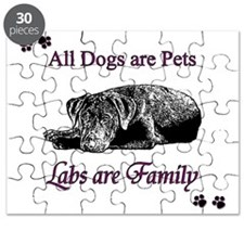 LabsFamily Puzzle