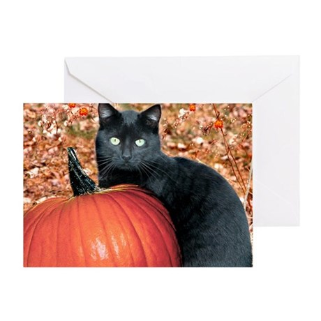 Bosco at Harvest Time Greeting Card