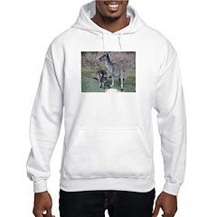 Kangaroos Hoodie