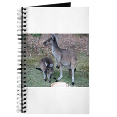 Kangaroos Journal