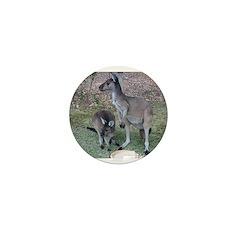 Kangaroos Mini Button
