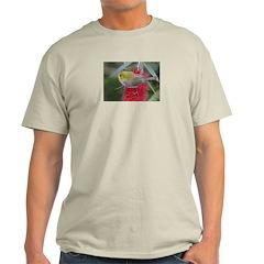 Silvereye Ash Grey T-Shirt