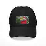 Silvereye Black Cap