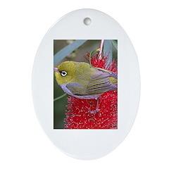 Silvereye Oval Ornament