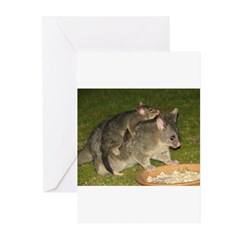 Possum mother & baby Greeting Cards (Pk of 10)