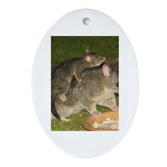 Possum mother & baby Oval Ornament