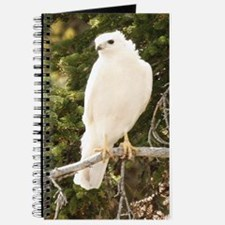 White red tail hawk Journal