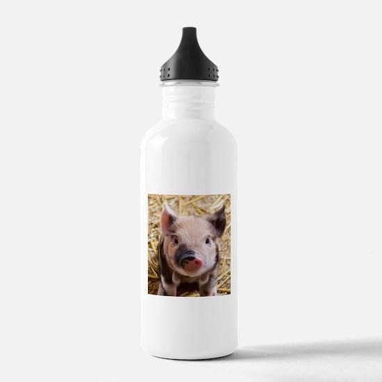 sweet piglet Water Bottle