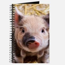 sweet piglet Journal