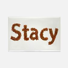 Stacy Fall Leaves Rectangle Magnet