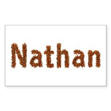 Nathan Fall Leaves Rectangle Decal