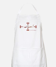 How Planes Fly BBQ Apron