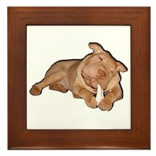 Chinese Shar Pei Dog Framed Tile
