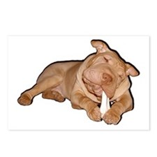 Chinese Shar Pei Dog Postcards (Package of 8)