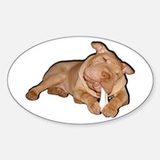 Chinese Shar Pei Dog Oval Decal