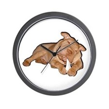Chinese Shar Pei Dog Wall Clock