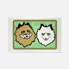 The Two Faces of Pom Magnets