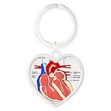 Heart Diagram Heart Keychain