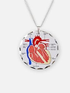 Heart Diagram Necklace