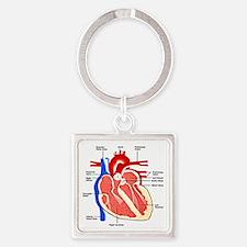 Heart Diagram Square Keychain