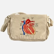 Heart Diagram Messenger Bag