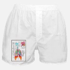 Respiratory System Boxer Shorts
