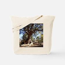 Twisted Tree Tote Bag