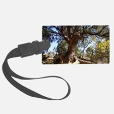 Twisted Tree Luggage Tag