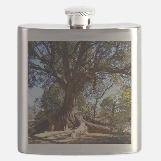 Twisted Tree Flask