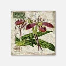 "vintage orchid botanical ar Square Sticker 3"" x 3"""