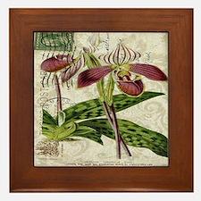 vintage orchid botanical art Framed Tile
