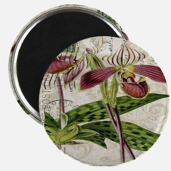 vintage orchid botanical art Magnet