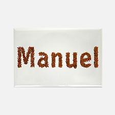Manuel Fall Leaves Rectangle Magnet
