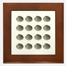 Quahogs - Hard Clams (16) Framed Tile