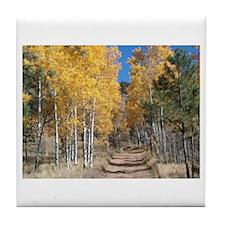 Aspen Path Tile Coaster