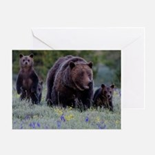 MAMMA GRIZZLY and 3 CUBS Greeting Cards