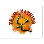 Team Katniss Catching Fire Small Poster