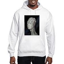 Alien (grey man) Hoodie