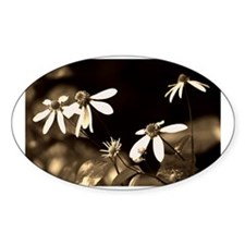 Black and White Photo of Flowers Decal