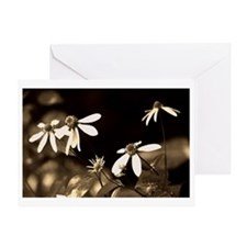 Black and White Photo of Flowers Greeting Card