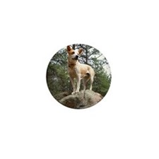 Red Heeler on Rock Mini Button
