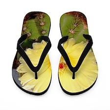 Cactus004 Flip Flops