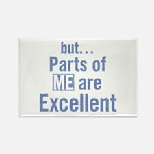 but... Parts of ME are Excellent. Rectangle Magnet