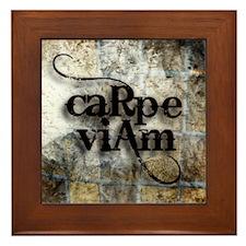 Carpe Viam Framed Tile