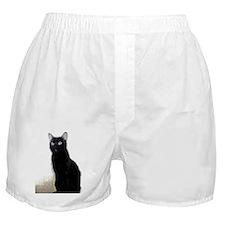black cat Boxer Shorts