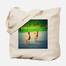 Two Watchful Deer in the Smoky Mountains Tote Bag