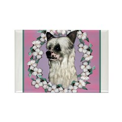Powder Puff Chinese Crested Rectangle Magnet